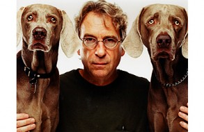 "William Wegman: ""Funney/Strange"" at the Norton Museum"